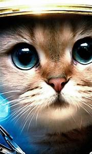 Astronaut Cat Wallpaper (page 2) - Pics about space
