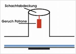 Geruch In Der Waschmaschine : fettabscheider geruch eckventil waschmaschine ~ Markanthonyermac.com Haus und Dekorationen