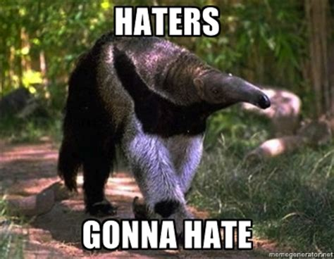 Anteater Meme - the plural of hyena things i find fascinating anteaters