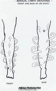 Manual Lymph Drainage Leg Illustrated Patterns