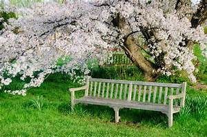18, Fascinating, Ideas, To, Choose, Your, Ideal, Garden, Bench