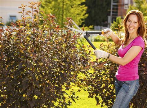 Garten Was Im Herbst Schneiden by Schneiden Im Herbst Aktiv Werden Garten News Garten