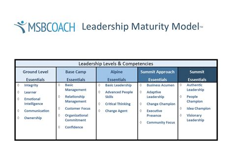 msbcoach leadership maturity model