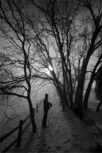 Mist and Fog Photography
