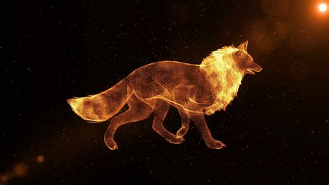 Animated Fox Wallpaper - fox glowing abstract animal walking through particles