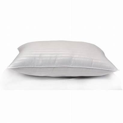 Pillow Soft Egyptian Cotton Pillows Bedding