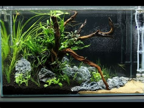 Aquascape Design Software - cube garden 60 p hd without