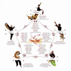Kung Fu and its many styles - infographic