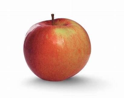 Apple Fortune Sweet Varieties Fuji Tart York