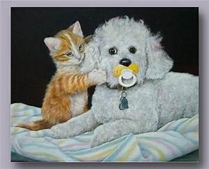 Hunde Katzen Bild Animaatjes Honden Poezen 26703