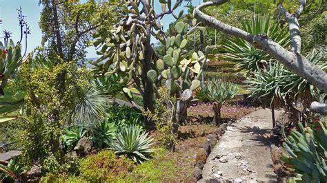 Botanischer Garten Funchal by Funchal Botanischer Garten 17 Rolf Maltas Website