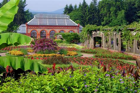 78 best images about biltmore house gardens on