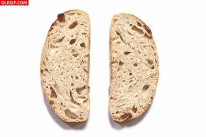 Pan Sandwiches Gifs Molde Tostas Ricas Imagenes