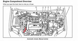 2008 Chevy Cobalt Parts Diagram07 Suzuki Forenza Timing