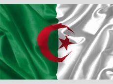 CAN beaucoup de blessés pour l'Algérie Africa Top Sports