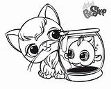 Coloring Pages Cat Pet Fish Littlest Printable Adults Print Friends sketch template