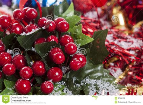 holly berries christmas decoration royalty free stock