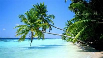Tropical Desktop Beach Wallpapers Backgrounds