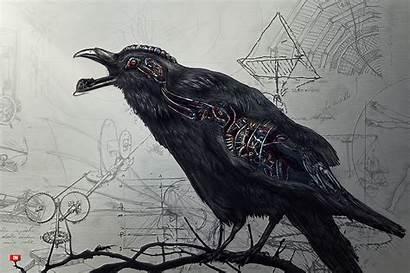 Raven Wallpapers Desktop 4k Deviantart Drawing 14th