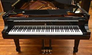 10 Different Types Of Pianos You Can Purchase
