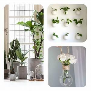 Porte Plante Interieur Design : plantes murales interieur design na06 jornalagora ~ Teatrodelosmanantiales.com Idées de Décoration