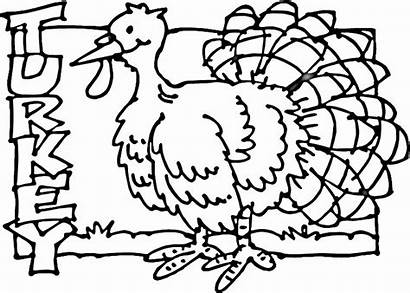 Turkey Coloring Pages Thanksgiving Printable November Poultry