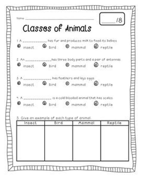 Best 25+ Classifying Animals Ideas On Pinterest  Animal Classification, Animal Classification