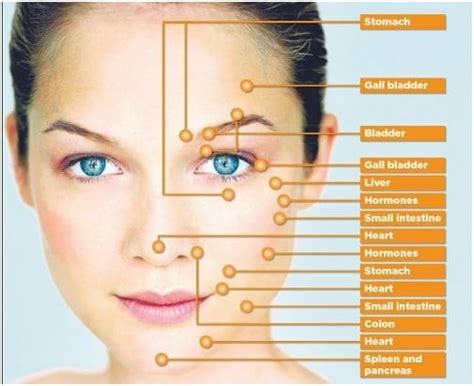 acne face map find   solution  acne  pimple placement