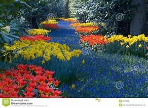Garten Blumen Bilder : bunter blumengarten stockfoto bild von floral garten 2249286 ~ Whattoseeinmadrid.com Haus und Dekorationen