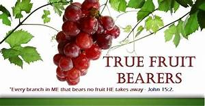 True Fruit Bearers