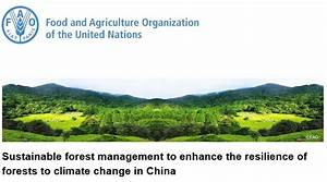 Sustainable Forest Management To Enhance The Resilience Of
