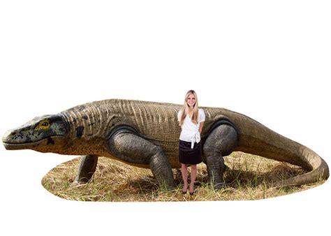 Giant Megalania Komodo Dragon