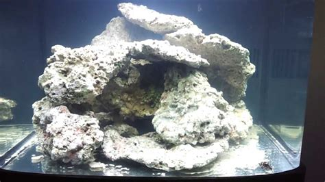 Aquascape Live Rock by Biocube 29 Day 1 My Aquascape And Curing The