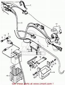 Honda Ct70h Trail 70h 1972 Ct70hk1 Wire Harness    Battery