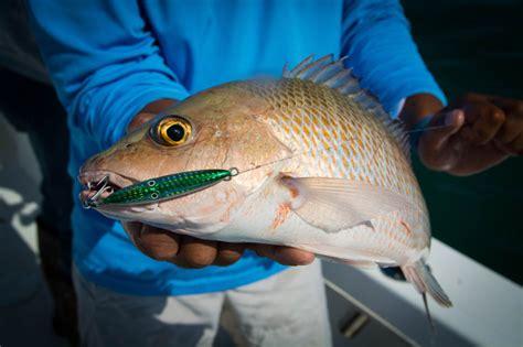 fishing artificial tips reefs snapper jig reef grouper offshore bait road