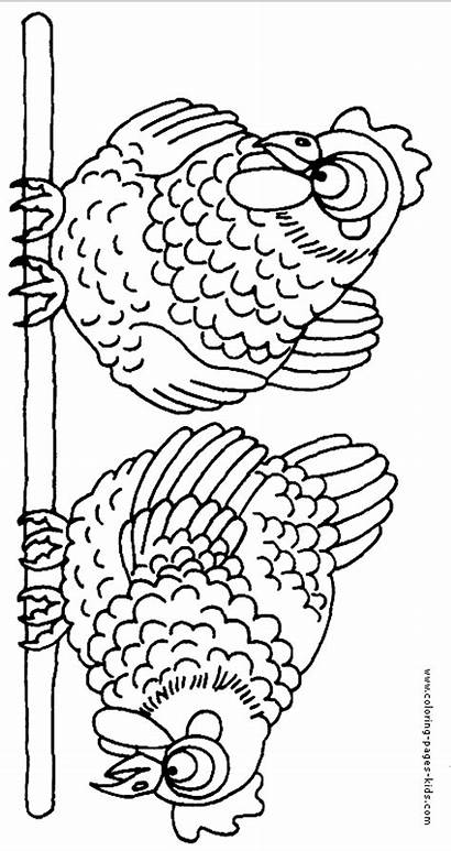 Coloring Pages Chicken Farm Chickens Animal Animals