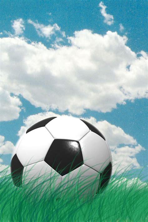 prato pallone da calcio cielo azzurro sport sfondi