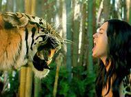 Katy Perry Roar Tiger