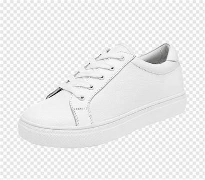 Sneakers Shoe Pattern Skate Global Trend Pngio