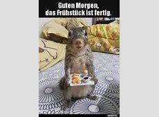 Guten Morgen DEBESTEde, Lustige Bilder, lustig foto
