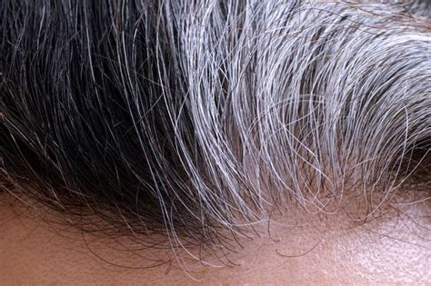To Brown Turned Grey by What Gray Hair Says About Your Health Mnn