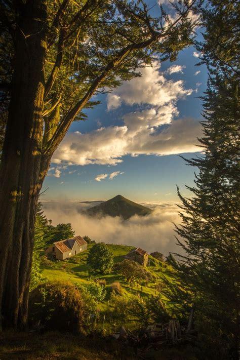 Otago Peninsula Dunedin New Zealand When I Go There