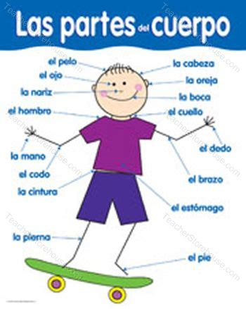 Spanish@ariel  Body Parts  Partes Del Cuerpo