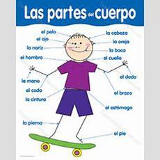 Spanish@ariel  Body Parts  Partes Del Cuerpo