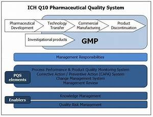 Ich Q10  Where Gmp And Good Business Practice Meet