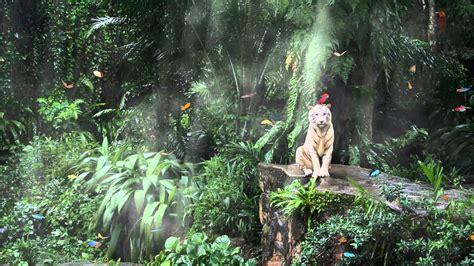 Animated Jungle Wallpaper - jungle fever animated wallpaper http www desktopanimated
