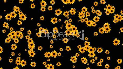 sunflower  wedding backgrounddisco neon flower pattern