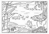 Coloring Pond Lente Pages Kleurplaat Kleurplaten Sloot Habitat Google Animals Animal Zoeken Nl Colouring Bookmarks Preschool Bloemen Discover Ashx Oma sketch template