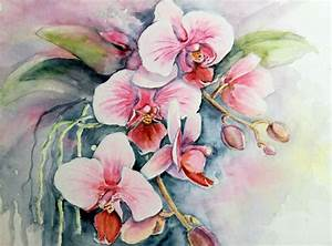 Aquarell Malen Blumen : bild orchidee blumen aquarellmalerei aquarell von ~ Articles-book.com Haus und Dekorationen
