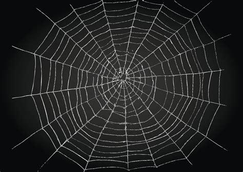Insolite  Un Pansement Avec Des Toiles D'araignées Top